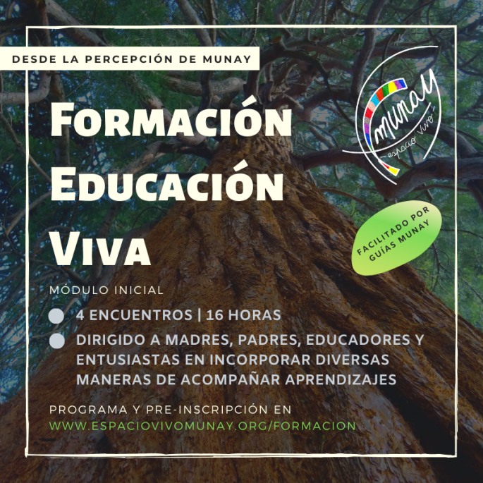 Formación Educación Viva